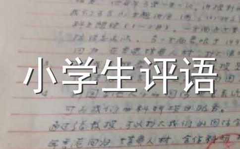 【精选】评语范文