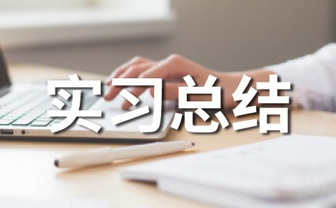 【热】实习小结范文(精选十二篇)