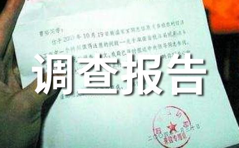 【实用】农村调查报告范文集锦14篇